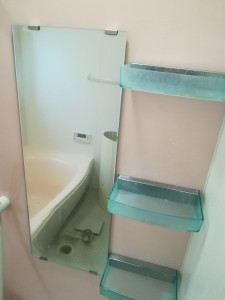 313 ゼロ川崎区 浴室全_180323_0006