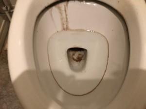 ゼロ港区浴室トイレ_190309_0002