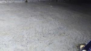 3月28日 ゼロ国分寺市、床下清掃_180329_0002